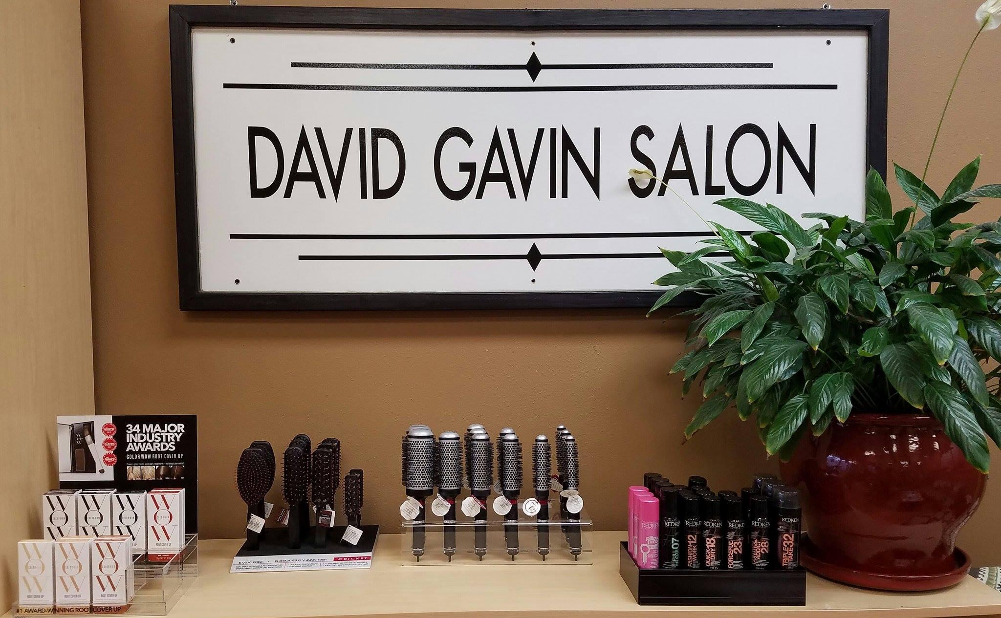 David Gavin Salon of the Berkshires