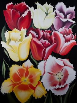 Eight Tulips  (1975)