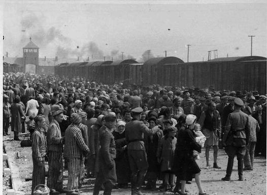 (PAGE- 4) Auschwitz_train_platform Ancho