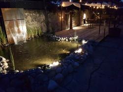 Teich u.Wasserfall bei Nacht