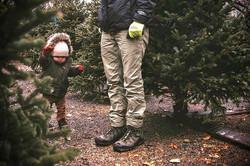 Christmas tree shopping✨