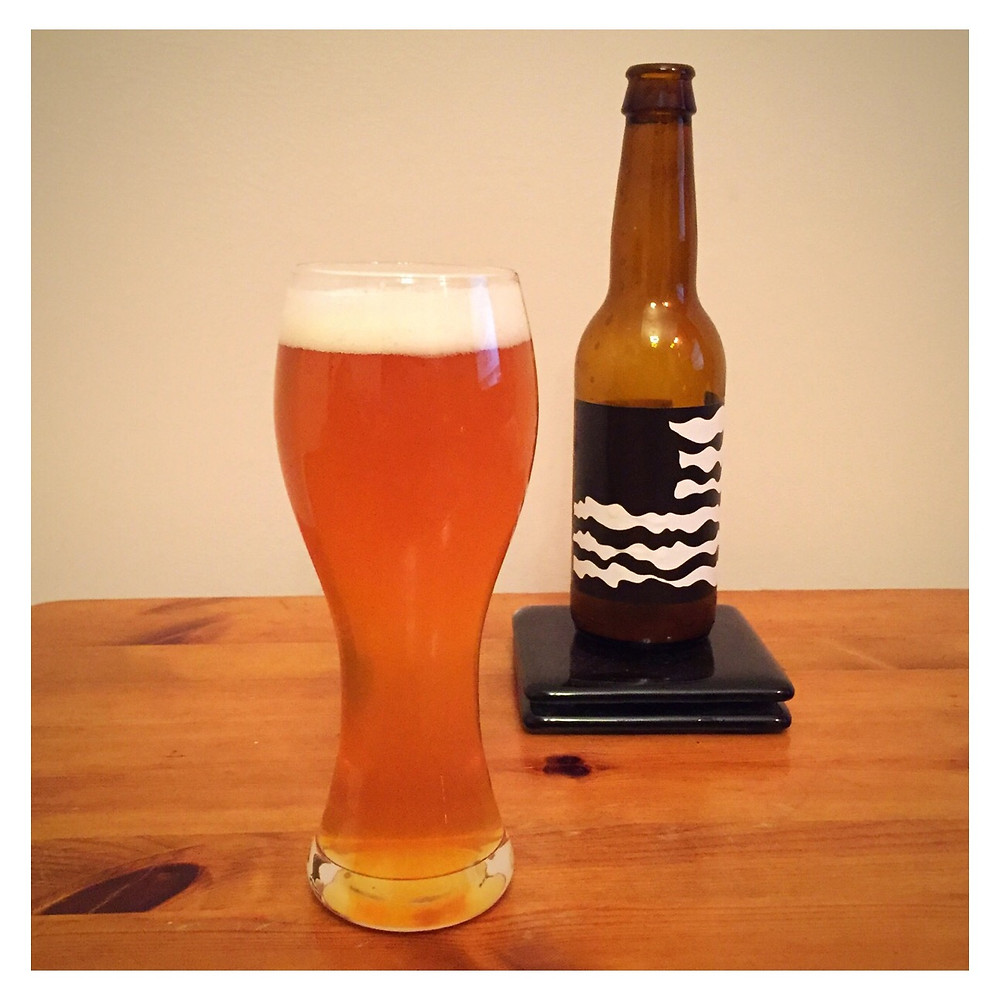 Nebuchadnezzar Poured - Craft Beer Reviews