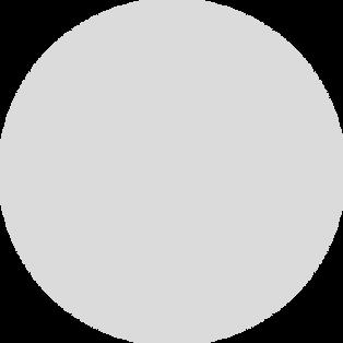 circle empty.png