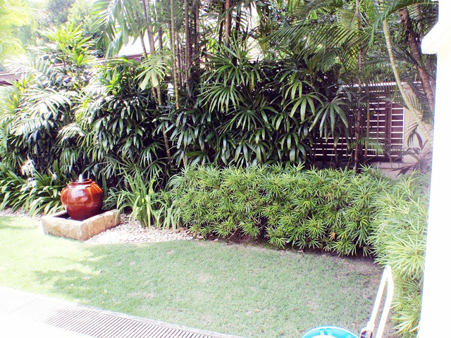 holland grove Landscaped Garden - how to
