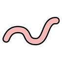 Worm.png