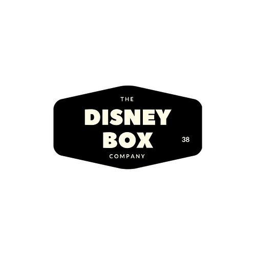 Disney Boutique Box
