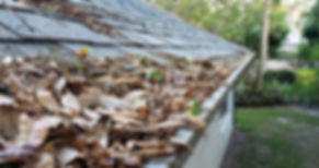 rain-gutters-full-of-leaves.jpg