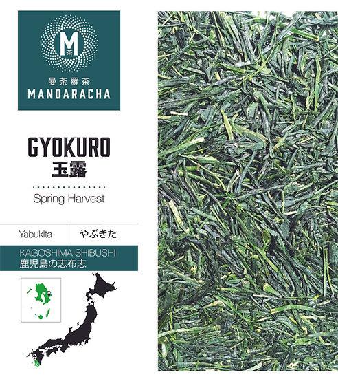 KAGOSHIMA SHIBUSHI GYOKURO