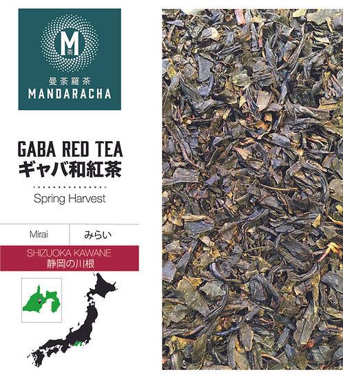 SHIZUOKA KAWANE GABA RED TEA