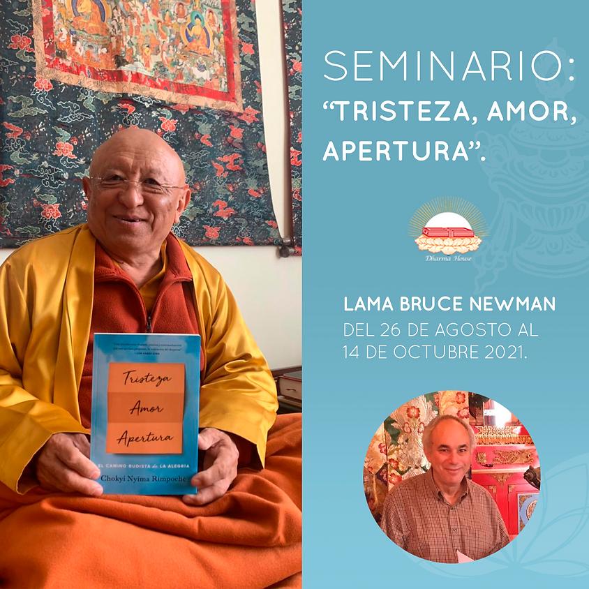 """Seminario """"Tristeza,  Amor, Apertura"""""""