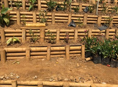 Taller d'Ecotecnologies al Cauca, Colombia - Projecte Aquarisc