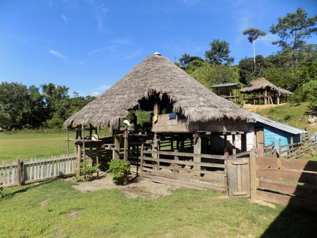 Nuevas intervenciones de vivienda y arquitectura desde la  cosmovisión de los Embera Katío-Colombia