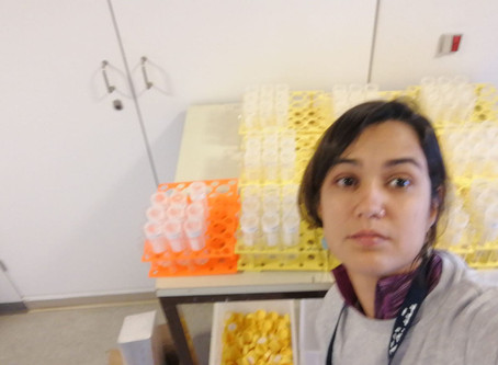 Research stay of Joana Castellar at the Aarhus Univ.