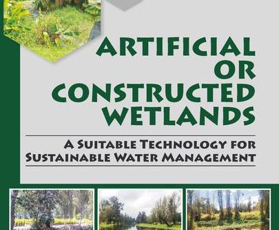 Aiguamolls Construïts o Artificials: una tecnologia adequada per a la gestió sostenible de l'aigua