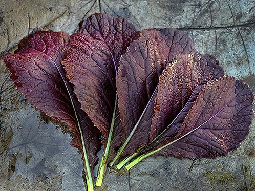 Red Leaf Mustard Greens