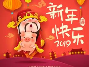 2019 - Année du Cochon de Terre Yin