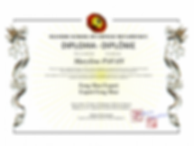 Diplome Feng Shui Adrien Silverstone Mingli academy Mastery school of chinese metaphysics