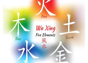Les 5 éléments ou Wu Xing, la base de tout