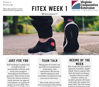 FitEx_2020_Newsletters_VA Series 1_Page_