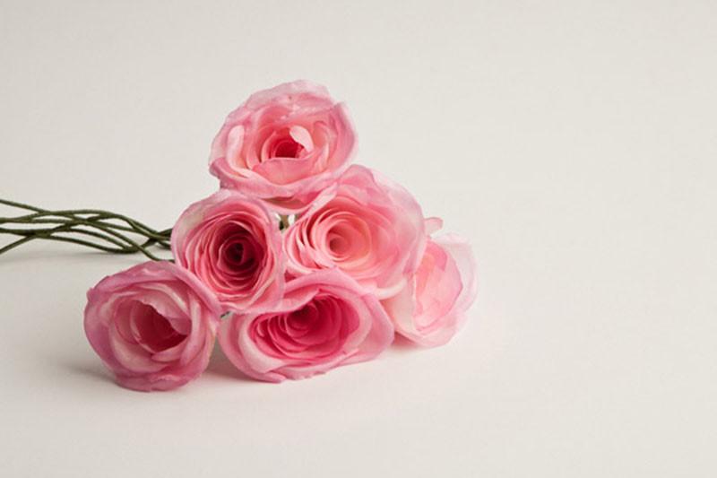 11 Rosas