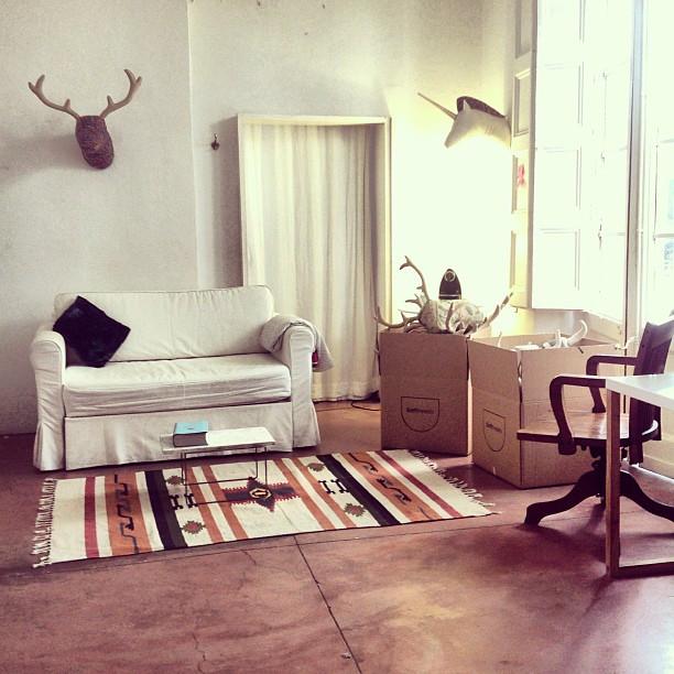 Softheads studio