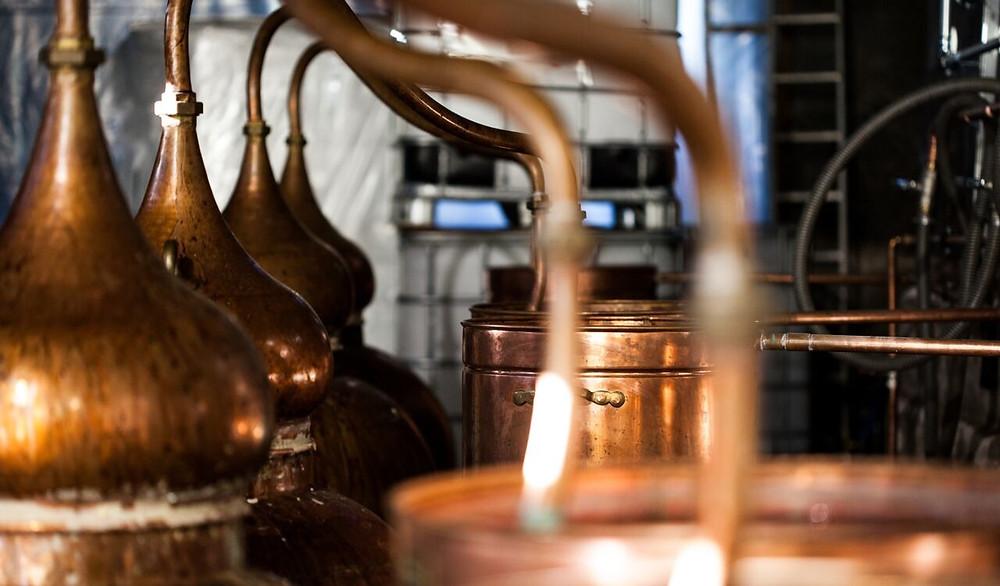 Darwin Citrus Spiced English Rum