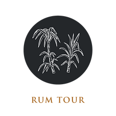 Tours-15.png