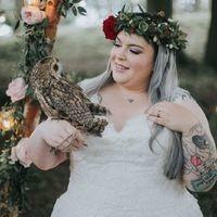Cheshire Weddings with Gauntlet Birds of Prey