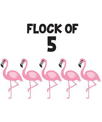 Flock of 5 Flamingos