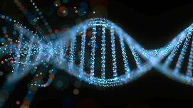 LAB 7 DNA.jpg