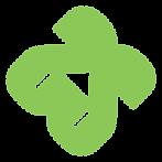 South Shore Custms Logo