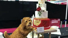 """Honey I Dropped The Cake"" .....  How To Transport your Bespoke Cake"