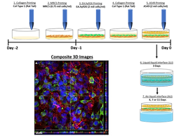New Paper Accepted into International Journal of Bioprinting