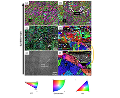 Latest paper accepted for publication in Journal of the Mechanical Behavior of Biomedical Materials