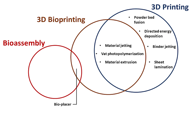Paper accepted for publication in International Journal of Bioprinting