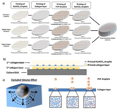 Latest paper accepted in Biomaterials Science.