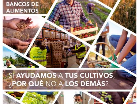 Extraordinaria colaboración de FMC con los Bancos de Alimentos