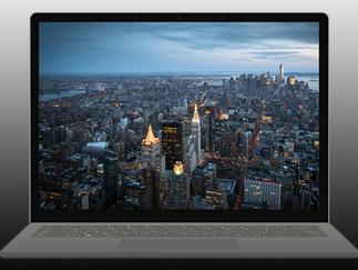 Windows or Mac Laptops