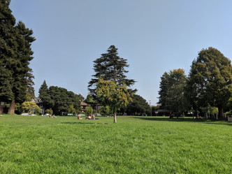Willard Park.jpg