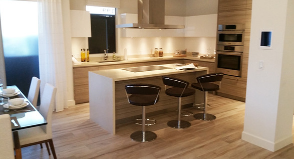 Kitchen 4 Professional Builders and Cons