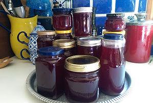 Chokecherry Syrup Recipe
