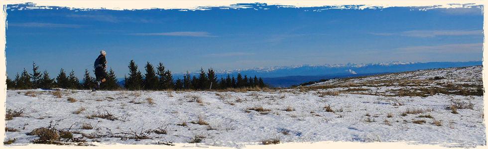 Demie-banniere-trail.jpg
