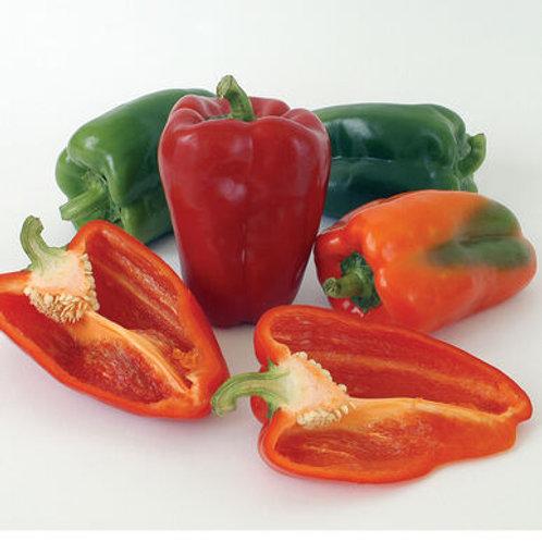 Organic Red Bell Pepper Per Kilo
