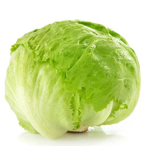 Organic Iceberg Lettuce Per Kilo