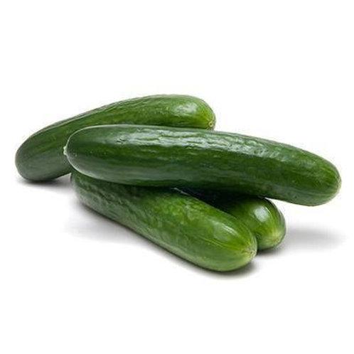 Organic Cucumber per Kilo