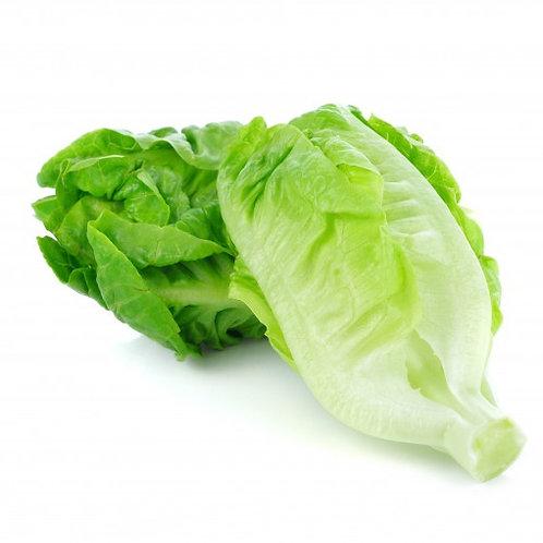 Organic Romaine Lettuce per Kilo