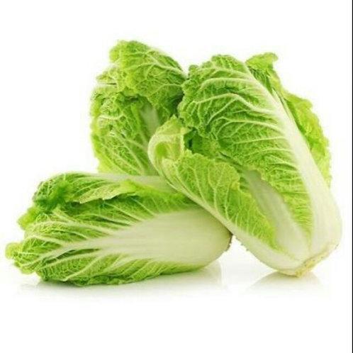 Organic Chinese Napa Cabbage / Wombok per kilo