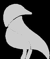 thumbnail_FARI - Oiseaux gris.png