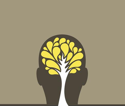 cerveau neuropsychologie