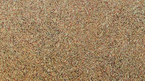 amendoa-dourada.png